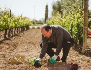 Me uno al reto de LG para reforestar España