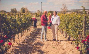 The Programme 'Aquí la Tierra' Promotes Our Non-Alcoholic Wine Today